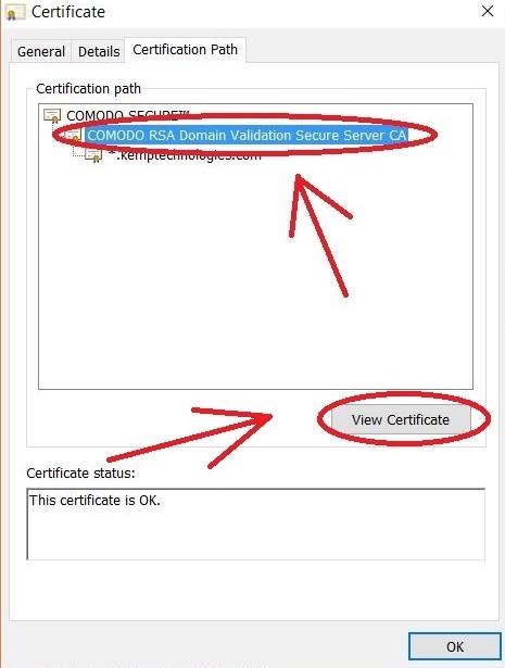 Downloading Intermediate Cert from Browser – Kemp Technologies